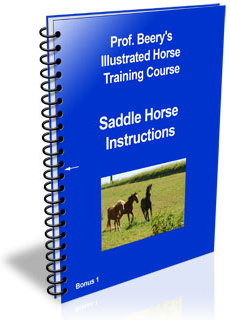 Ebook cover: The Secrets of Riding Saddle Horse