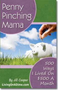 Ebook cover: Penny Pinchin' Mama