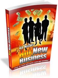 Ebook cover: Hot New Business