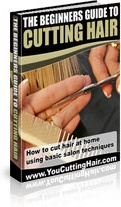 Ebook cover: The Beginners Guide To Cutting Hair