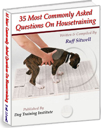 Ebook cover: 35 Most Commonly Asked Questions On Housetraining