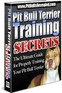 Ebook cover: Pit Bull Terrier Training Secrets