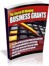 Ebook cover: How to Successfully Apply for Business Grants