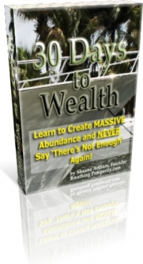 Ebook cover: 30 Days to Wealth