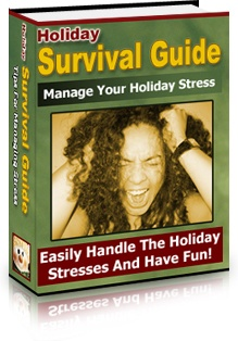 Ebook cover: Holiday Survival Guide