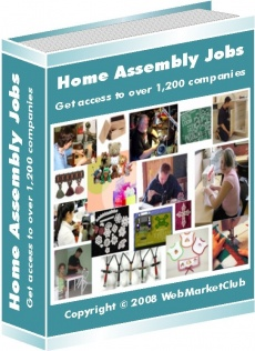 Ebook cover: Home Assembly Jobs