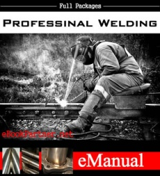 Ebook cover: Professional Welding