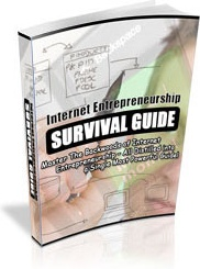 Ebook cover: The Internet Entrepreneurship Survival Guide