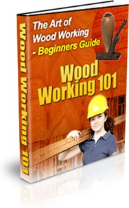Ebook cover: The Art of Woodworking