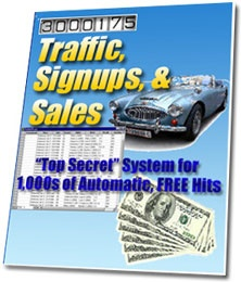 Ebook cover: Traffic, Signups, & Sales System
