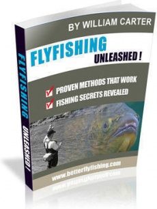 Ebook cover: Flyfishing Unleashed