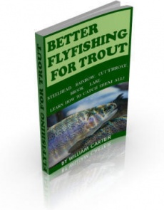 Ebook cover: Better Flyfishing for Trout