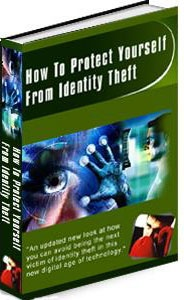 Ebook cover: Preventing Identity Theft