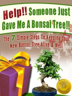 Ebook cover: Help!! Someone Just Gave Me A Bonsai Tree!!