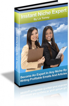 Ebook cover: Instant Niche Expert