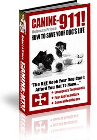 Ebook cover: The Canine-911! Emergency Report