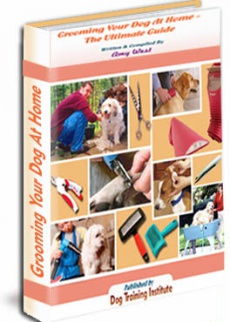 Ebook cover: Grooming Your Dog At Home