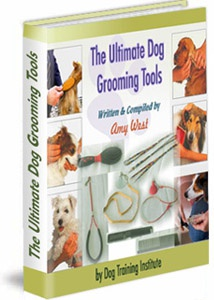 Ebook cover: The Ultimate Grooming Tools
