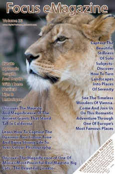Ebook cover: Focus eMagazine 12 Monthly Issues Subscription