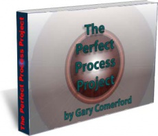 Ebook cover: The Perfect Process Project