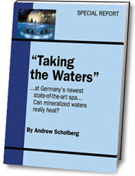 Ebook cover: Taking the Waters