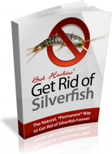 Ebook cover: Get Rid of Silverfish