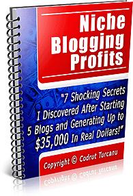 Ebook cover: Niche Blogging Profits