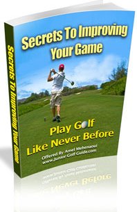 Ebook cover: Secrets To Improving Your Game