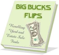 Ebook cover: Big Bucks Flips