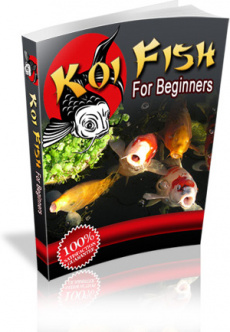 Ebook cover: Koi Fish For Beginners