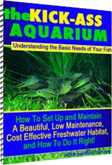 Ebook cover: The Kick-ass Aquarium: Understanding The Basic Needs Of Your Fish.