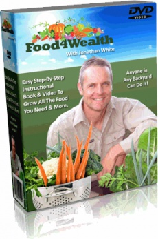 Ebook cover: The Food4Wealth