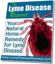 Ebook cover: Lyme Diease Remedy Report