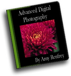 Ebook cover: Advanced Digital Photography