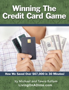 Ebook cover: Winning The Credit Card Game