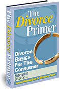 Ebook cover: Divorce Primer