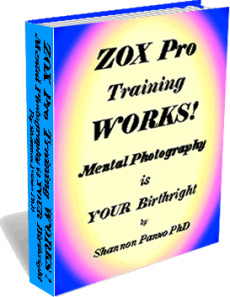 Ebook cover: ZOX Brain Management