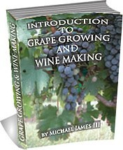 Ebook cover: Introduction To Growing Grapes and Wine Making