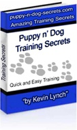 Ebook cover: Puppy n'Dog Training Secrets