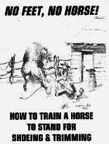 Ebook cover: No Feet No Horse