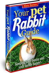 Ebook cover: Your Pet Rabbit Guide