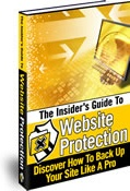 Ebook cover: The Insider's Guide To Website Protection