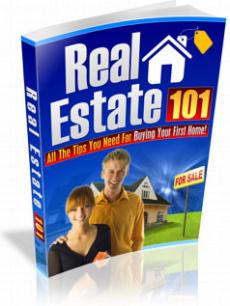Ebook cover: Real Estate 101
