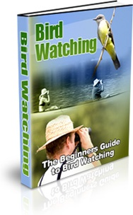 Ebook cover: Bird Watching