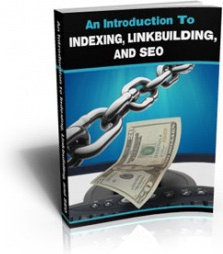 Ebook cover: An Introduction To Indexing, Linkbuilding, And SEO