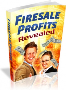 Ebook cover: Firesale Profits