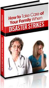 Ebook cover: How to take care of your family when disaster strikes