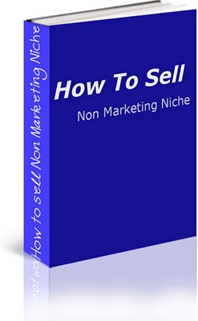 Ebook cover: How Sell Niche Products