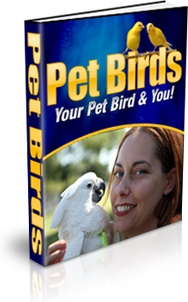 Ebook cover: Pet Birds