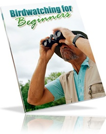Ebook cover: Bird Watching For Beginners